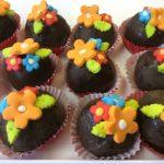 Chocolats fourés au gâteau (plusieurs parfums)